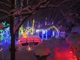 a winter wonderland rotary botanical gardens