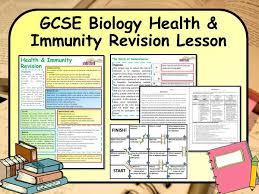 best 25 gcse biology revision ideas on pinterest biology