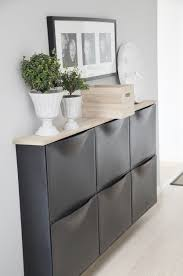Estate Storage Cabinets Trones Shoe Storage Cabinet Black Wall Mount Plywood And Pink
