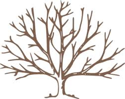brown tree brown bare tree clip at clker vector clip online