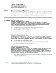 Sample Resume For Bankers by Sample Resume For Experienced Banking Professional Bank Resume