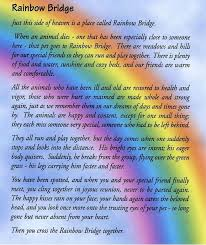 coping with loss of pet grief relief from the loss of a beloved pet