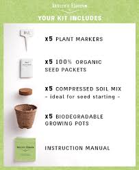 save 5 grow 5 herbs from seed with nature u0027s blossom plant kit