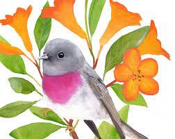 free printable bird wall art bird painting printable wall art bird print printable bird