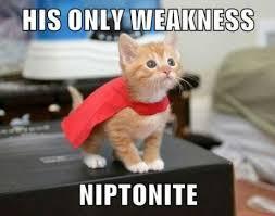 Super Meme - super kitty s only weakness cat meme cat planet cat planet