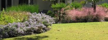 denton landscape design landscaping denton tx