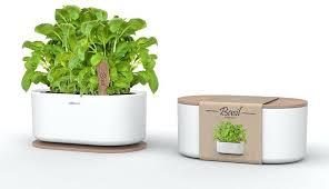 Window Sill Garden Inspiration Window Sill Herb Garden Kits Herb Garden Kit Home Inspirations