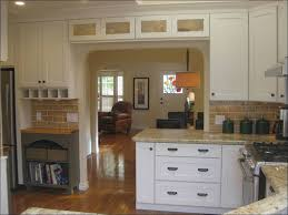 Staining Kitchen Cabinets Without Sanding Kitchen Best Paint For Bathroom Cabinets Professional Spray