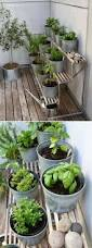 five ideas for your vertical herb garden gardening viral