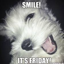 Today Is Friday Meme - thank god it s friday dog edition friday memes come wag along