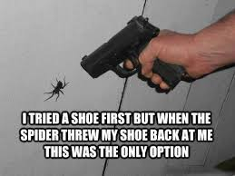 I Tried Killing A Spider - funny spider meme 500 i tried a shoe first but when the
