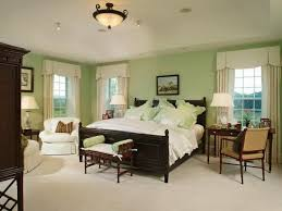 cheerful paint colors with dark wood elegant design mint green