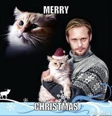Christmas Memes - 25 christmas memes quotes and humor