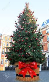 Large Christmas Tree Ornaments by Large Christmas Tree Outside On Public City Square Stock Photo