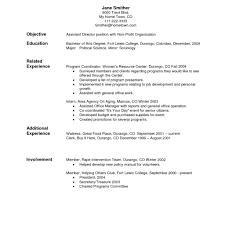 resume for application format resume format sle cv format cv resume application letter