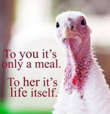thanksgiving the vegan rd
