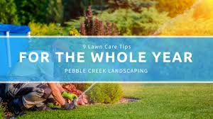 Landscaping Franklin Tn by Lawn Care Tips Archives Landscaping Landscape Design