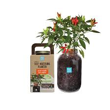 organic self watering planter u2013 back to the roots