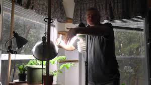 indoor grow room lighting with cfl youtube