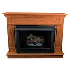 propane fireplace insert with blower aytsaid com amazing home ideas