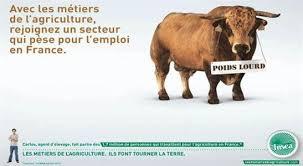revue chambres d agriculture l emploi en agriculture et agro la fnsea lance une cagne en faveur des métiers de l agriculture