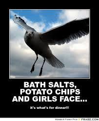 Bath Salts Meme - bath salts potato chips and girls face flying seagull meme