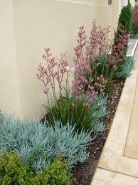 Small Garden Landscaping Ideas Best 25 Narrow Garden Ideas On Pinterest Small Narrow Garden