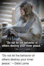 Peace Memes - rawforbeauty com do not let the behavior of others destroy your