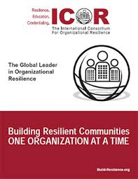 One Organization Icor Resilience Frameworks