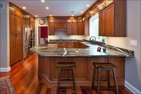 Kitchen  Kitchen Kitchen Cabinet Makers Kitchen Cabinet Knobs - Kitchen cabinets miami