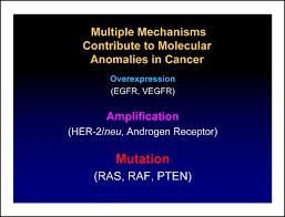 the progress and promise of molecular imaging probes in oncologic