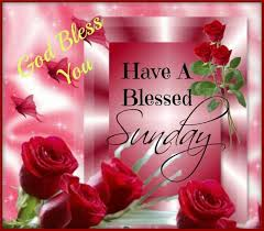 happy sunday greetings quotes sms wishes saying e card wallpapers