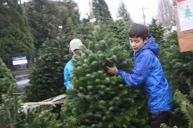 troop u0026 crew 100 ballard u2013 christmas tree lot u2013 my ballard