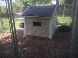 dog house coop backyard chickens