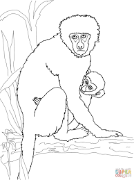 vervet monkey with its baby coloring page free printable
