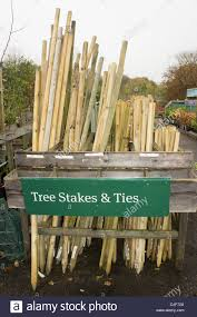tree stakes garden center tree stakes for sale display stock photo royalty