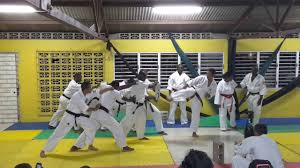 Barnes Karate Kyoshi Shaun Barnes Block Breaking First Jamaica Zen Do Kai Kan