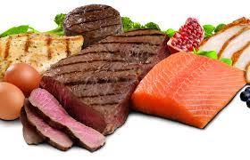 alimentazione ricca di proteine dieta ricca di proteine un toccasana per la fecondit罌 giornale