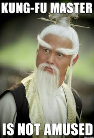 Fu Meme - kung fu master not amused meme on imgur