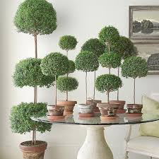 Topiaries Plants - 250 best topiary images on pinterest topiaries old world and