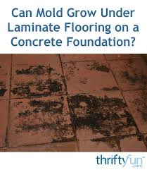 Laminate Flooring On Concrete Can Mold Grow Under Laminate Flooring On A Concrete Foundation