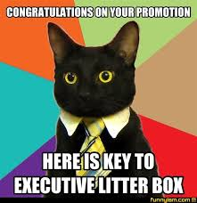 Funny Congratulations Meme - congratulations on your promotion here is key to executive litter