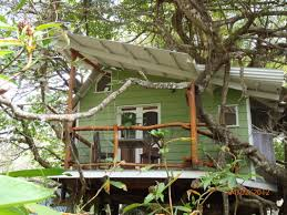costa rica treehouse vacation home design inspirations