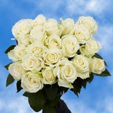 cheap flowers free delivery white roses cheap flowers free delivery global