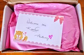 rachel christmas gift ideas for 5 types of girls kawaii box
