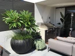 pots in gardens ideas like the potted frangipani and the cascading succulent plant in