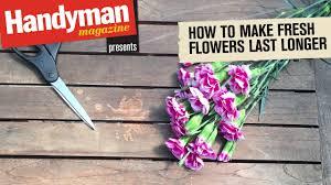 how to make cut flowers last longer youtube