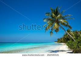 tropical island paradise perfect tropical island paradise beach old stock photo 262595531