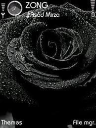 theme black rose dark playboy theme for nokia e63 free download