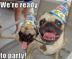 Happy Birthday Pug Meme - joke4fun memes pugs and kisses on yout birthday